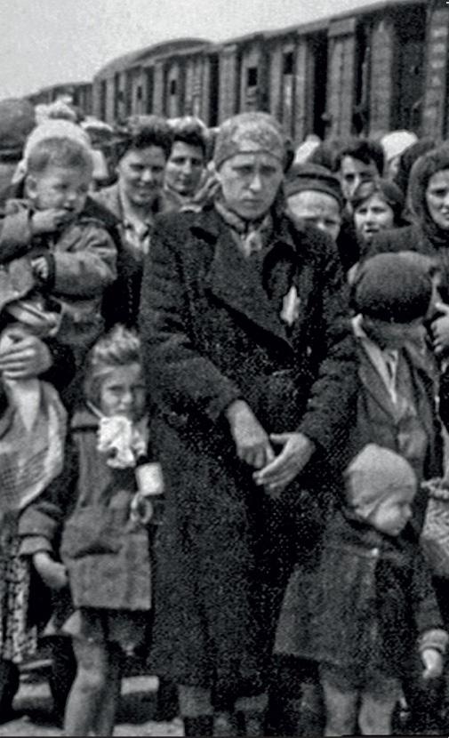 Der Zweite Weltkrieg: Gesamtedition