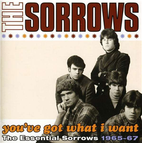 You've Got What I Want - The Essential Sorrows 1965-67