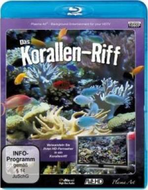 Korallenriff HD