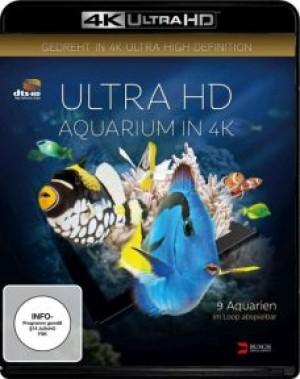 Aquarium (4K UHD)