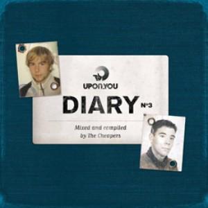 Diary No. 3