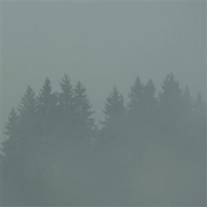 Donnerwetter (LP)