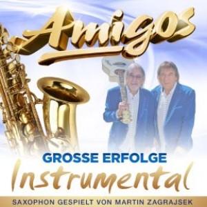Große Erfolge - Instrumental