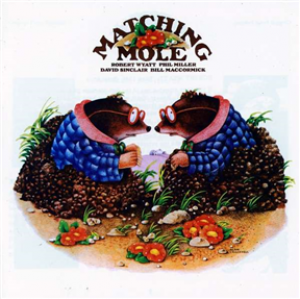 Matching Mole: Expanded Edition