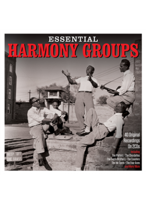 Essential Harmony Groups