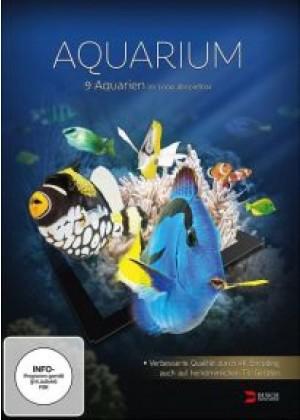 Aquarium (HD DVD)