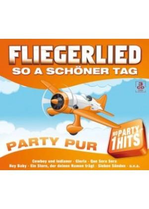 Fliegerlied - So a schöner Tag