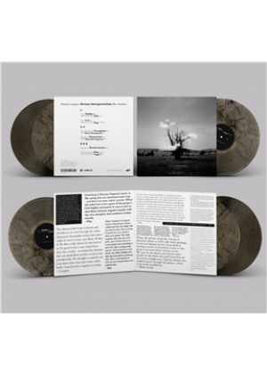 Dream Interpretation (The Remixes) (Marbled Vinyl)