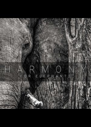 Harmony For Elephants: A Charity Album